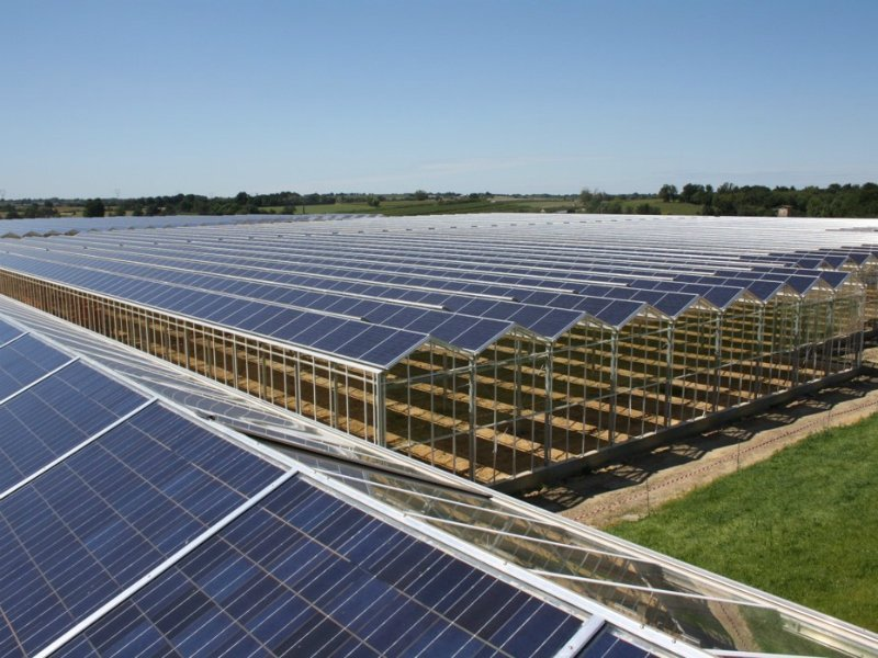Solar greenhouse roof systems of Alcomij