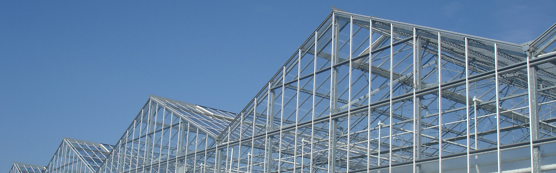 Image of Alcomij's widespan greenhouse roof system