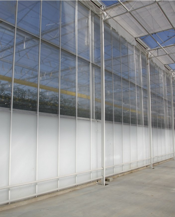 An image of a custom Alcomij greenhouse gable from the inside
