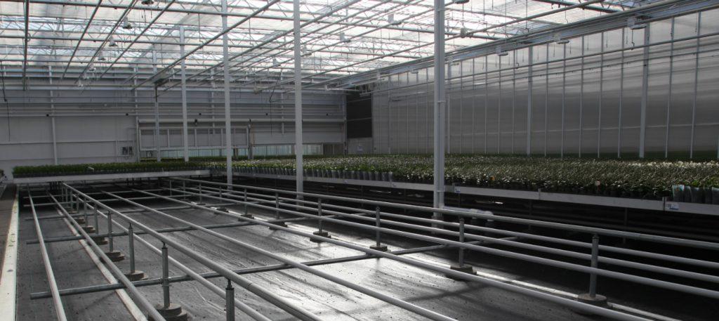 OK Plant 3